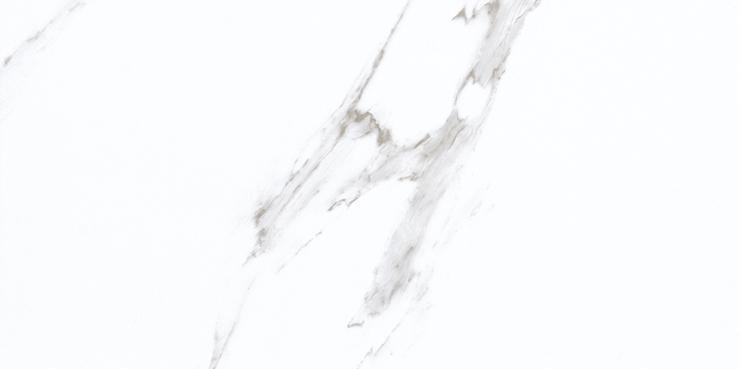 YZ36101-J